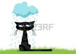 15487405-assis-chat-noir-malheureux-drole-et-bleu-nuage-pluvieux